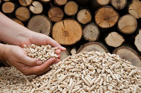 biomass systems, biomass energy, biofuels equipment